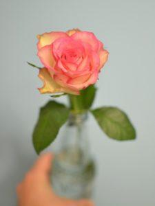trinquons avec des fleurs