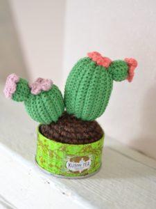 cactus crocheté par une fille à frange